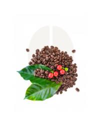 Кофе моносорт в зернах
