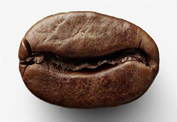 Кава в зернах оптом від компанії Leader Coffee