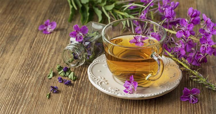 Іван-чай оптом від компанії Leader Coffee