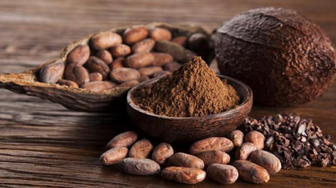Купить какао оптом в интернет-магазине Leader Coffee